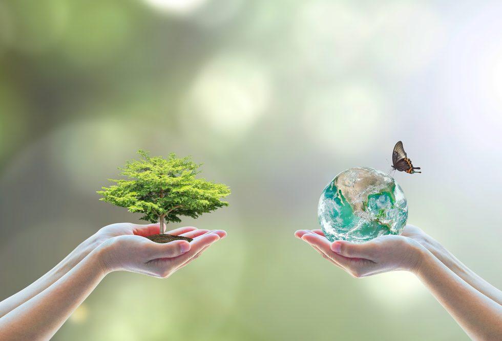 ecologisch speelgoed